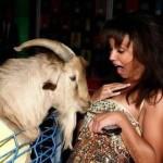 Девушка и козел